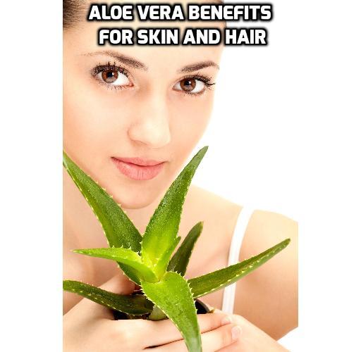 Aloe Vera benefits for skin and hair - Aloe Vera benefits for skin and hair
