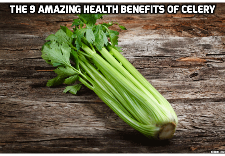 Revealing Here the 9 Amazing Health Benefits of Celery - One vegetable has been identified as literal 'superhero' among all nutritious and beneficial food sources.Eat it regularly and you can drive away a whole range of health issues such as: arthritis, type 2 diabetes, high cholesterol, high blood pressure and even ED. Plus, it's one of the most powerful weight loss secrets I known (and I know many). Celery is one of the most nutritious and hydrating vegetable you can consume. Revealing Here the 9 Amazing Health Benefits of Celery
